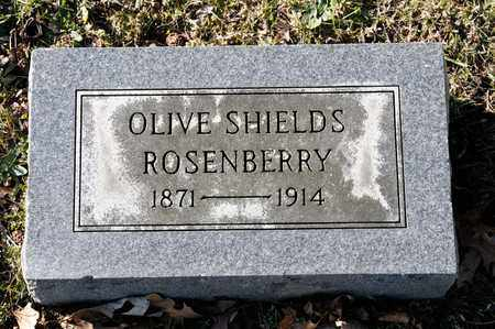 ROSENBERRY, OLIVE - Richland County, Ohio | OLIVE ROSENBERRY - Ohio Gravestone Photos