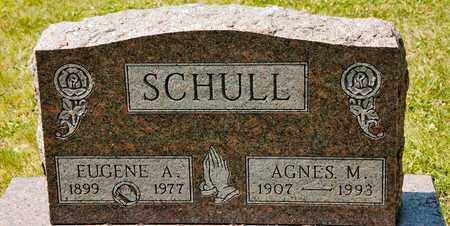 SCHULL, AGNES M - Richland County, Ohio | AGNES M SCHULL - Ohio Gravestone Photos