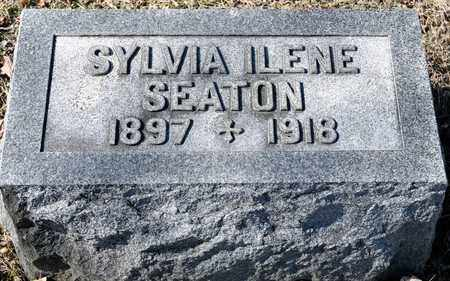 SEATON, SYLVIA ILENE - Richland County, Ohio | SYLVIA ILENE SEATON - Ohio Gravestone Photos