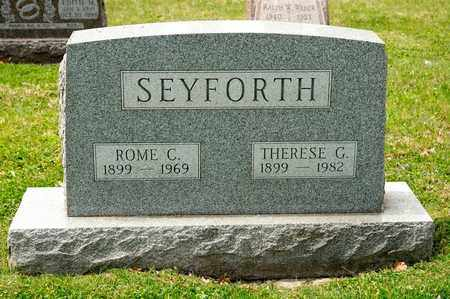 SEYFORTH, THERESE G - Richland County, Ohio | THERESE G SEYFORTH - Ohio Gravestone Photos