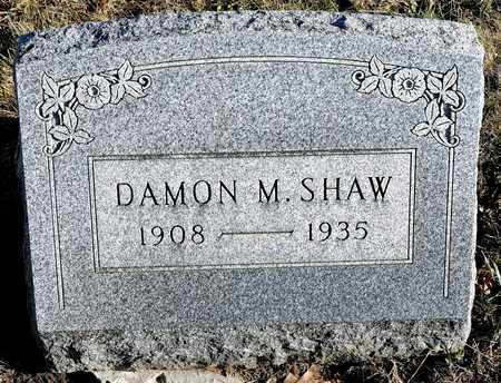 SHAW, DAMON M - Richland County, Ohio | DAMON M SHAW - Ohio Gravestone Photos