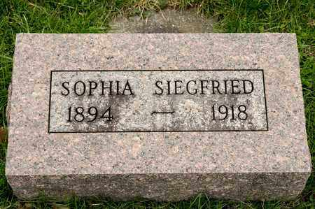 SIEGFRIED, SOPHIA - Richland County, Ohio | SOPHIA SIEGFRIED - Ohio Gravestone Photos