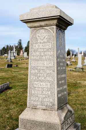 SIPE, CATHERINE - Richland County, Ohio | CATHERINE SIPE - Ohio Gravestone Photos
