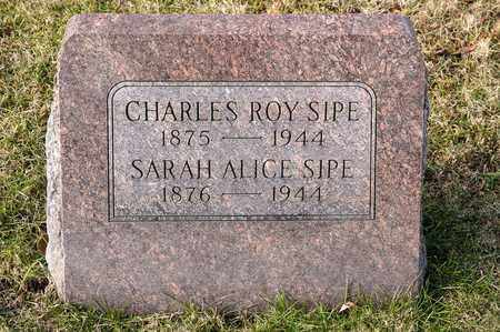 SIPE, SARAH ALICE - Richland County, Ohio | SARAH ALICE SIPE - Ohio Gravestone Photos