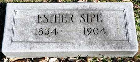 SIPE, ESTHER - Richland County, Ohio | ESTHER SIPE - Ohio Gravestone Photos