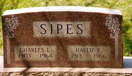 SIPES, HALLIE E - Richland County, Ohio | HALLIE E SIPES - Ohio Gravestone Photos