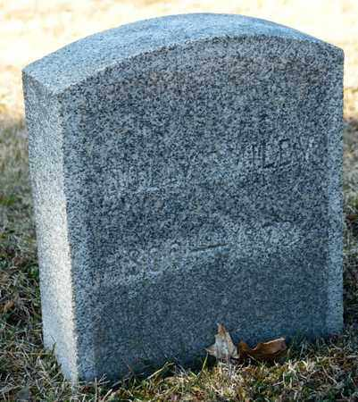 SMILEY, DOLLY - Richland County, Ohio | DOLLY SMILEY - Ohio Gravestone Photos
