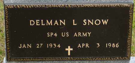 SNOW, DELMAN L - Richland County, Ohio | DELMAN L SNOW - Ohio Gravestone Photos