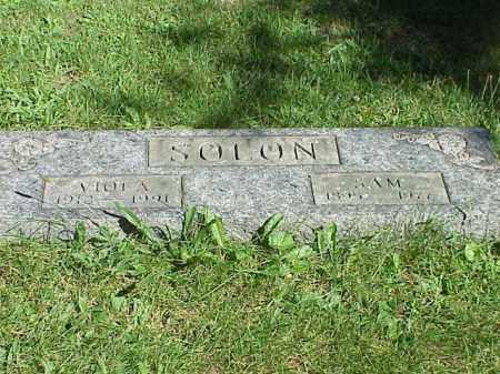 SOLON, VIOLA - Richland County, Ohio | VIOLA SOLON - Ohio Gravestone Photos