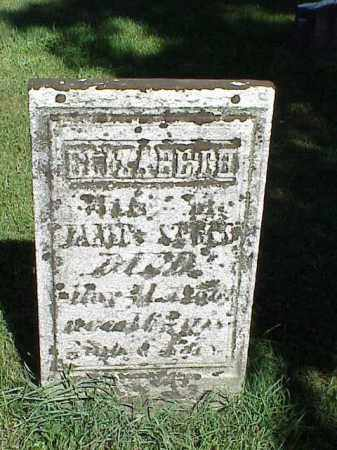 STEEL, ELIZABETH - Richland County, Ohio | ELIZABETH STEEL - Ohio Gravestone Photos