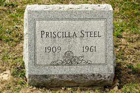 STEEL, PRISCILLA - Richland County, Ohio | PRISCILLA STEEL - Ohio Gravestone Photos