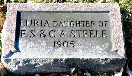 STEELE, EURIA - Richland County, Ohio | EURIA STEELE - Ohio Gravestone Photos