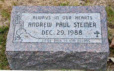 STEINER, ANDREW PAUL - Richland County, Ohio | ANDREW PAUL STEINER - Ohio Gravestone Photos