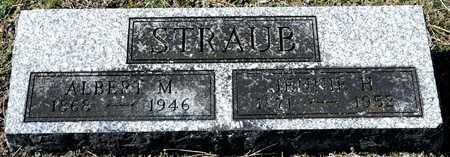 STRAUB, ALBERT M - Richland County, Ohio | ALBERT M STRAUB - Ohio Gravestone Photos