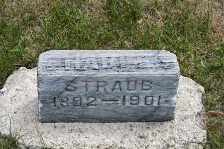 STRAUB, CHARLIE - Richland County, Ohio | CHARLIE STRAUB - Ohio Gravestone Photos