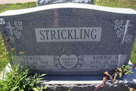 STRICKLING, DENZEL - Richland County, Ohio | DENZEL STRICKLING - Ohio Gravestone Photos