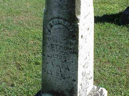 STROME, CATHARINE - Richland County, Ohio | CATHARINE STROME - Ohio Gravestone Photos