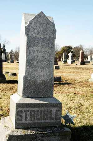 STRUBLE, JOHN - Richland County, Ohio | JOHN STRUBLE - Ohio Gravestone Photos