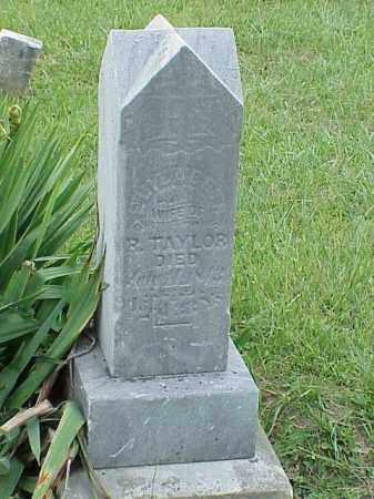 TAYLOR, ELIZABETH - Richland County, Ohio | ELIZABETH TAYLOR - Ohio Gravestone Photos