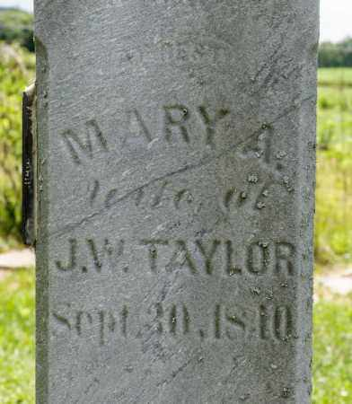 TAYLOR, MARY A - Richland County, Ohio | MARY A TAYLOR - Ohio Gravestone Photos
