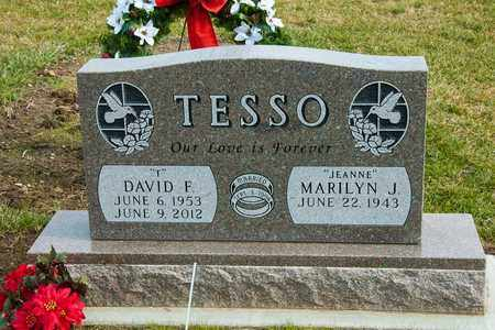TESSO, DAVID F - Richland County, Ohio | DAVID F TESSO - Ohio Gravestone Photos
