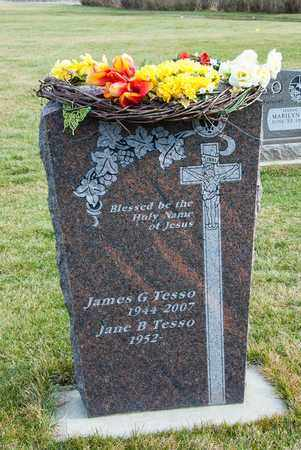 TESSO, JAMES G - Richland County, Ohio | JAMES G TESSO - Ohio Gravestone Photos