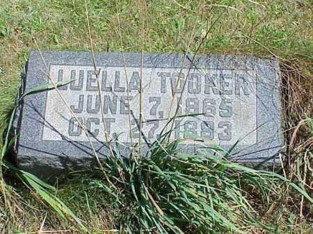 TOOKER, LUELLEA - Richland County, Ohio | LUELLEA TOOKER - Ohio Gravestone Photos