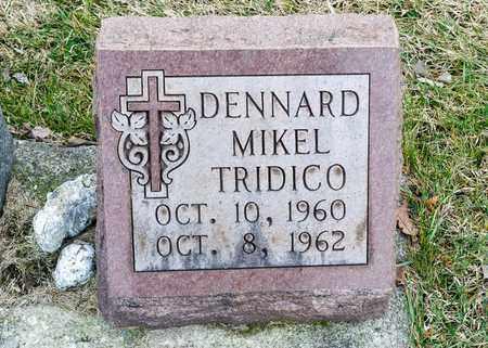 TRIDICO, DENNARD MIKEL - Richland County, Ohio | DENNARD MIKEL TRIDICO - Ohio Gravestone Photos