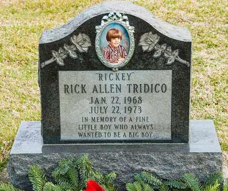 TRIDICO, RICK ALLEN - Richland County, Ohio | RICK ALLEN TRIDICO - Ohio Gravestone Photos