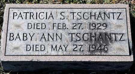 TSCHANTZ, PATRICIA S - Richland County, Ohio | PATRICIA S TSCHANTZ - Ohio Gravestone Photos
