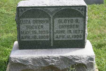 GRIBBEN TUCKER, ELIZA - Richland County, Ohio | ELIZA GRIBBEN TUCKER - Ohio Gravestone Photos