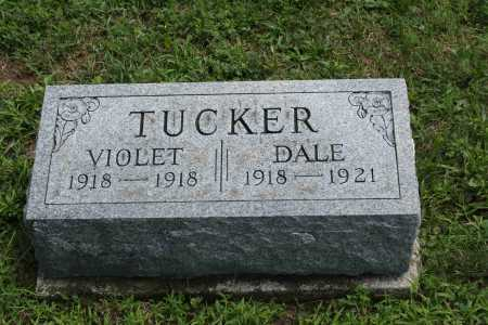 TUCKER, DALE - Richland County, Ohio | DALE TUCKER - Ohio Gravestone Photos