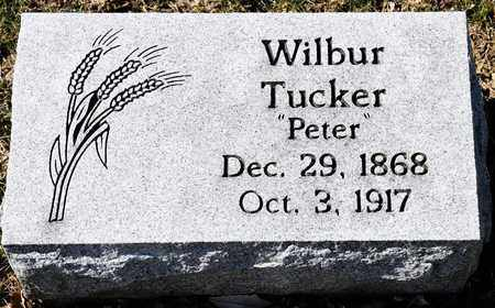 TUCKER, WILBUR - Richland County, Ohio | WILBUR TUCKER - Ohio Gravestone Photos
