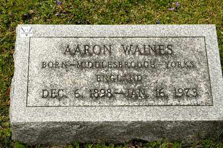 WAINES, AARON - Richland County, Ohio | AARON WAINES - Ohio Gravestone Photos