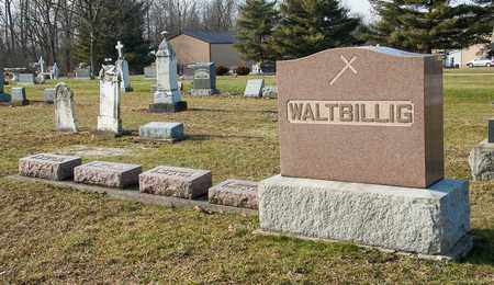WALTBILLIG, LAURA M - Richland County, Ohio | LAURA M WALTBILLIG - Ohio Gravestone Photos