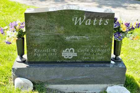 BOGGS WATTS, CARLA S - Richland County, Ohio | CARLA S BOGGS WATTS - Ohio Gravestone Photos