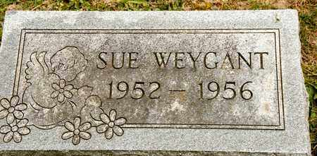 WEYGANT, SUE - Richland County, Ohio | SUE WEYGANT - Ohio Gravestone Photos