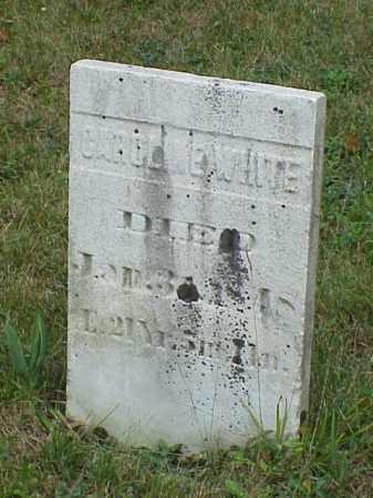 WHITE, CAROLINE - Richland County, Ohio   CAROLINE WHITE - Ohio Gravestone Photos
