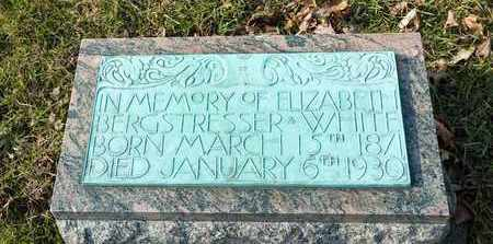 BERGSTRESSER WHITE, ELIZABETH - Richland County, Ohio | ELIZABETH BERGSTRESSER WHITE - Ohio Gravestone Photos