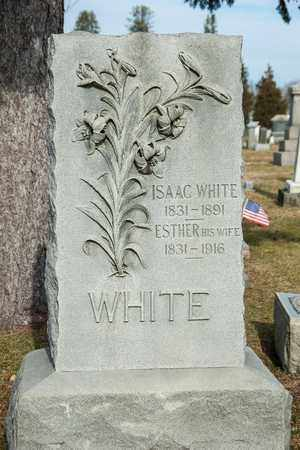WHITE, ESTHER - Richland County, Ohio | ESTHER WHITE - Ohio Gravestone Photos