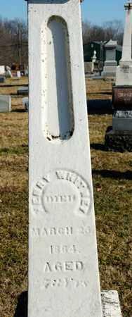 WHITNEY, HENRY - Richland County, Ohio | HENRY WHITNEY - Ohio Gravestone Photos