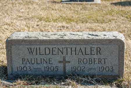 WILDENTHALER, PAULINE - Richland County, Ohio | PAULINE WILDENTHALER - Ohio Gravestone Photos