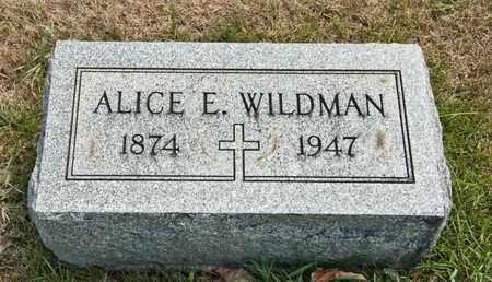 WILDMAN, ALICE E - Richland County, Ohio | ALICE E WILDMAN - Ohio Gravestone Photos
