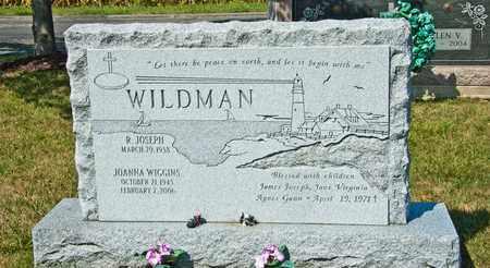 WILDMAN, JOANNA - Richland County, Ohio | JOANNA WILDMAN - Ohio Gravestone Photos