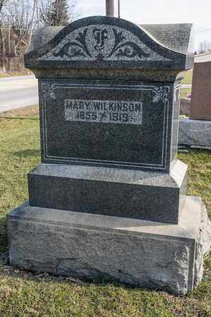WILKINSON, MARY - Richland County, Ohio | MARY WILKINSON - Ohio Gravestone Photos