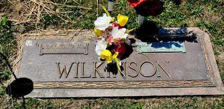 WILKINSON, RAYMOND M - Richland County, Ohio | RAYMOND M WILKINSON - Ohio Gravestone Photos