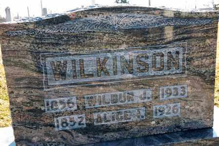 WILKINSON, WILBUR J - Richland County, Ohio | WILBUR J WILKINSON - Ohio Gravestone Photos