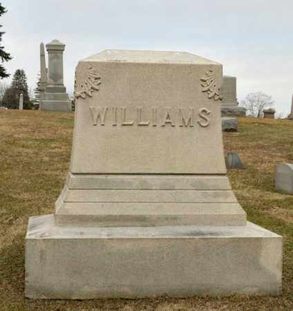 WILLIAMS, WHITING - Richland County, Ohio | WHITING WILLIAMS - Ohio Gravestone Photos