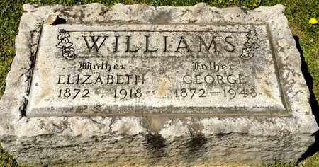 WILLIAMS, ELIZABETH - Richland County, Ohio | ELIZABETH WILLIAMS - Ohio Gravestone Photos
