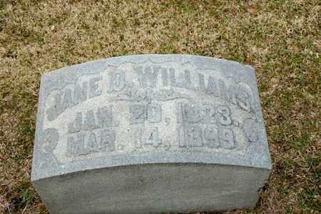 WILLIAMS, JANE D - Richland County, Ohio | JANE D WILLIAMS - Ohio Gravestone Photos